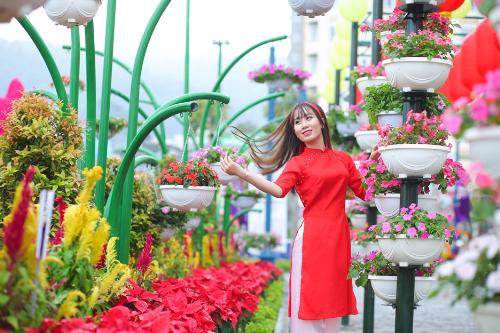 Cả một rừng hoa nở bên vịnh Hạ Long với nhiều loại đặc sắc như hồng tỉ muội nữ hoàng, cẩm tú cầu& đưa du khách đến với những không gian ngợp ngời sắc xuân. Dường như Tết đã rộn ràng ngay lúc này, nơi thành phố di sản.