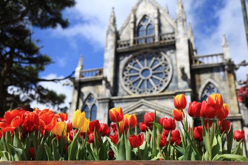 Trẩy hội hoa xuân Sun World Ba Na HillsXứ hoa Sun World Ba Na Hills Tết này sẽ rực rỡ tưng bừng với một lễ hội hoa quy mô đặc biệt lớn. Khung cảnh ngày Tết cổ truyền được tái hiện sống động với ông đồ thảo chữ đầu xuân, hoạt động gói bánh chưng diễn ra vào ngày 26-27 Tết cùng nhiều chương trình nghệ thuật, giải trí đặc sắc.