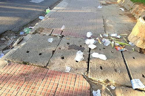 Đà Lạt ngập rác sau Tết Nguyên đán - 7