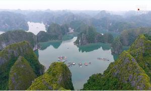 Vịnh Lan Hạ đẹp quyến rũ trong mắt khách Tây