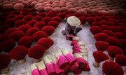 Bốn bức ảnh Việt Nam vào top đẹp nhất thế giới