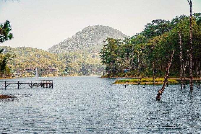 5 điểm chụp hình đẹp ở Đà Lạt lên phim 'Tháng năm rực rỡ'