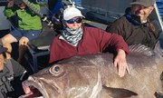 Nữ du khách bất ngờ vì câu được cá 62 kg tại Australia