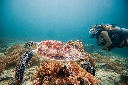 Bãi biển của đảo Gili Air, thuộc quần đảo Gili,IndonesiaThiên đường Gili Air thuộc quần đảo Gili chỉ cách hai giờ di chuyển bằng tàu từBali.Ở đây, du khách và người dân không đượcsử dụng motor nên có thể phảiđi bộ, xe đạp hoặc dùng ngựa thồ. Ảnh:Tommy Schultz.