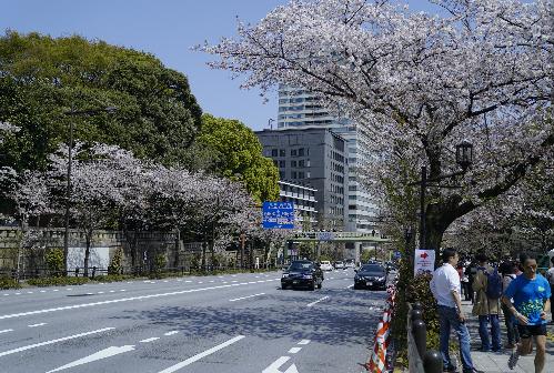 Chuyến khám phá Nhật Bản của blogger du lịch Thiết Nguyễn - 1