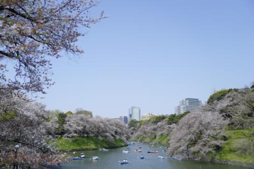 Chuyến khám phá Nhật Bản của blogger du lịch Thiết Nguyễn - 2