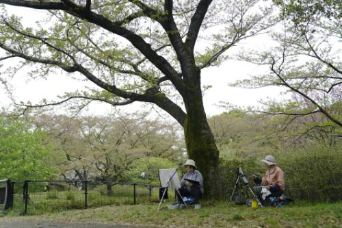 Chuyến khám phá Nhật Bản của blogger du lịch Thiết Nguyễn - 6