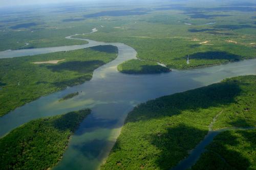 Thượng nguồn của Amazon vẫn là một ẩn số đối với các nhà khoa học. Ảnh:Pinterest.