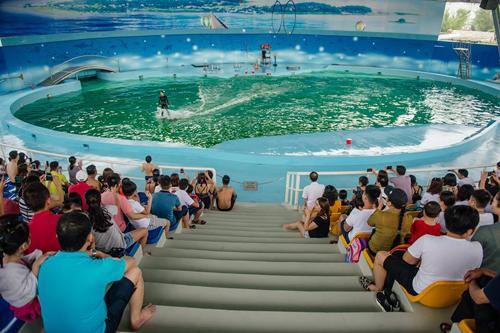 Khu biểu diễn cá heoNằm ở xã Sài Sơn, huyện Quốc Oai, cách trung tâm Hà Nội hơn 20 km, khu bãi biển nhân tạo và biểu diễn cá heo là nơi vui chơi dành cho các gia đình có trẻ nhỏ. Ba ngày đầu tháng 6, một chương trình dành cho các bé sẽ có sự góp mặt của nghệ sĩ Tự Long và Xuân Bắc để khuấy động không khí. Khu vui chơi mở cửa từ 8h30 đến 19h. Khung giờ biểu diễn kịch trên sân khấu biển là 16h30 - 17h10. Giờ biểu diễn cá heo là 11h và 15h30.