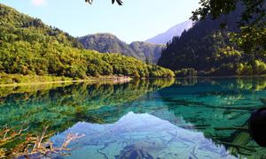 Vẻ đẹp mùa hè ở Cửu Trại Câu gần một năm sau động đất