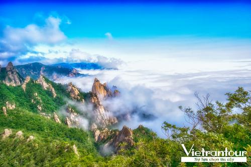 Tour Yang Yang  Seoul  Nami  Everland  Seoraksan 6 ngày giá 11,99 triệu đồng Đoàn sẽ đi cáp treo lên đỉnh núi Seorak  top 5 điểm leo núi ấn tượng xứ Hàn để ngắm nhìn cảnh sắc núi non trùng điệp bảo phủ bởi hoa cỏ mùa hạ. Đây cũng là cơ hội để du khách hiêm bái chùa cổ Sinheungsa với tháp xá lợi 3 tầng bằng đá Hyangseongsaji hơn 1.300 năm tuổi được bảo tồn gần như nguyên vẹn, tượng Đức Phật mạ đồng nặng 108 tấn, cao 14,6m.Tiếp đó, du khách tham quan nhà cổ Ojukheon  bảo vật quốc gia Hàn Quốc, nơi nữ nhà thơ, họa sĩ trứ danh thời Joseon Shin Saimdang đã sống và sinh hạ Yi I (hiệu Yulgok), một trong 2 học giả hàng đầu, người đỗ đầu bảng trong 9 kì thi khoa cử, có cống hiến to lớn cho sự phát triển của Nho học thời Joseon. Hoặc du khách có thể dạo bước ở cầu đi bộ đáy kính dài nhất Hàn Quốc với 156m sàn tạo thành từ 3 lớp kính chịu lực xây dựng trên mặt hồ Uiamho.