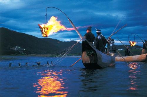 Nghệ thuật bắt cá trên sôngbằng chim cốc và lửa của người Nhật. Ảnh:centraljapan.