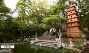 Việt Phủ Thành Chương trên sóng truyền hình Mỹ