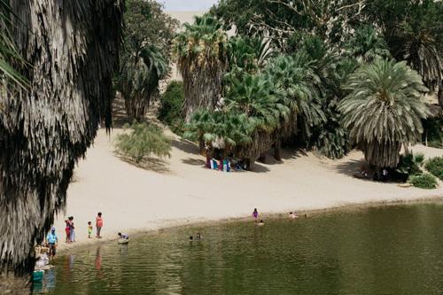 Phép lạ ở thị trấn nằm giữa sa mạc khô cằn nhất thế giới - page 2 - 3