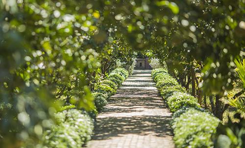 Là khu nghỉ dưỡng sinh thái duy nhất của cố đô, ngay bên bờ sông Hương thơ mộng, Hue Ecolodge thu hút các gia đình bởi phong cách đơn giản lãng mạn nhưng cũng vô cùng hiện đại. Điểm cộng của khu nghỉ dưỡng là khuôn viên rất rộng và các căn bungalow có cây xanh bao quanh nên vô cùng mát mẻ, đồng thời có quá nhiều góc đẹp để sống ảo.