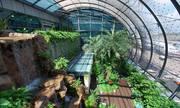 Lý do Changi là sân bay số một thế giới