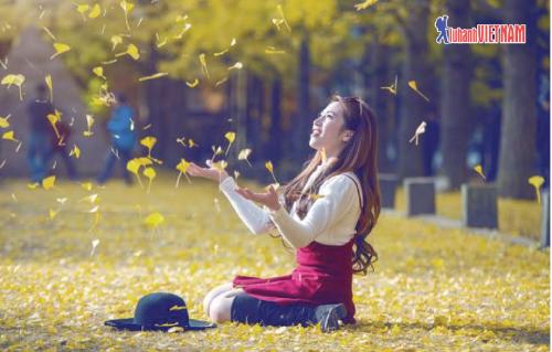 Hàn Quốc, Nhật Bản là hai quốc gia được nhiều khách lựa chọn du lịch mùa thu.