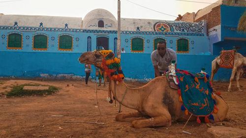 Màu sắc sặc sỡ ở làng Nubian.
