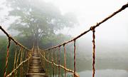 Cây cầu gỗ tại Sa Pa vô tình nổi tiếng khắp thế giới