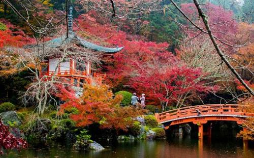 Kyoto là điểm du lịch nổi tiếng với các di tích và đền đài tuyệt đẹp. Ảnh: Joaquin Osorio Castillo.