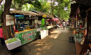 Khu chợ nổi không thuyền giữa lòng thủ đô Thái Lan