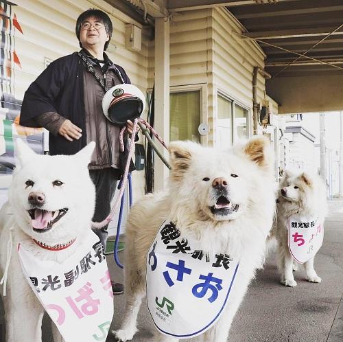 Wasao (yến in chữ xanh), đứng đón kháchcùng vợ Tsubaki (trái) và bé Chrome. Ảnh:CGTN.