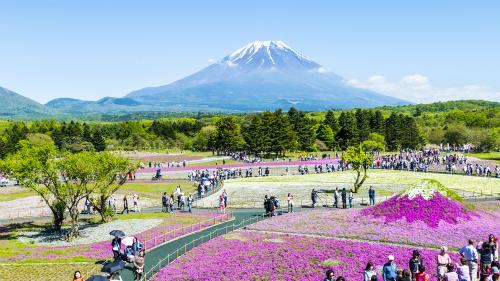Công viên quốc gia thuộc vùng đồi Takino SuzuranNếu bạn muốn tìm một địa điểm sống ảo đầy sắc hoa thì đừng bỏ lỡ công viên quốc gia thuộc vùng đồi Takino Suzuran. Tại đây có hàng nghìn loài hoa được trồng mang đậm nét Hokkaido khoe sắc quanh năm. Bên cạnh đó, du khách còn có cơ hội được tận mắt chứng kiến những loài chim hoang dã như Akagera, Tsutsuki. Ảnh: Tugo.