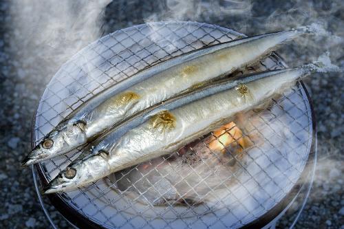 Những con cá thu đao tươi rất chắc thịt, thân thẳng dài như một thanh kiếm. Ảnh: istock.