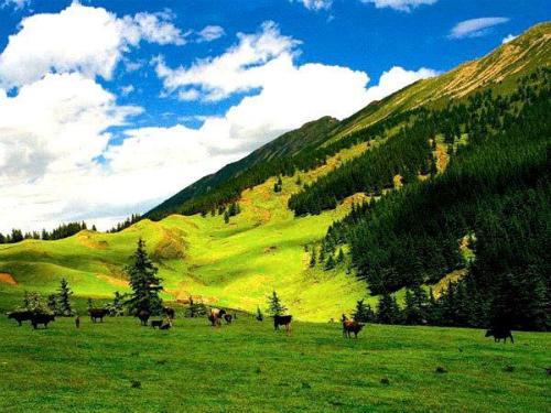 Trải dài khắp Ninh Hạ và Nội Mông Cổ, núi Helanlà tạo nên một môi trườngsinh thái quan trọng ở phía tây bắc Trung Quốc. Vườn quốc gia ẩntrong núi với nhiều loài động vật hoang dã.