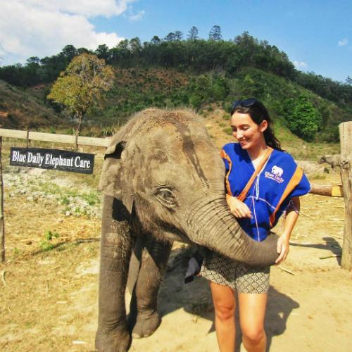 Laura chơi đùa với voi ở Chiang Mai, Thái Lan. Ảnh: Wandering with Laura.