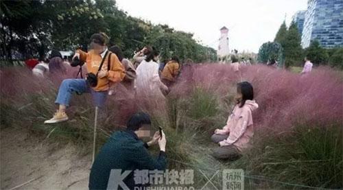 Du khách trèo lên cỏ để chụp ảnh. Ảnh: SCMP.