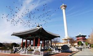 Du lịch Hàn Quốc 5 ngày 5 đêm chỉ 16,999 triệu đồng