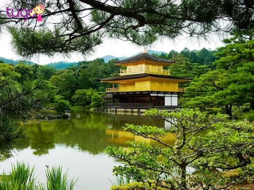 Đền Kim Cát Tự Kinkakuji tại Kyoto Nhật Bản. Ảnh: Tugo.