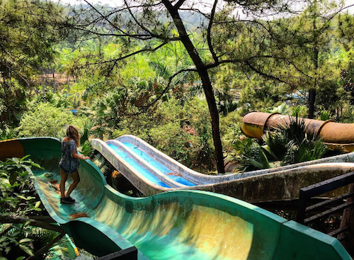 Máng trượt phủ đầy rêu bị bỏ hoang gần 5 năm nay. Ảnh: Instagram.