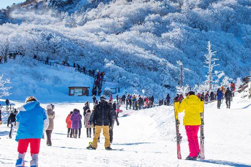 Ngoài những môn thể thao ngoài trời, mùa đông Hàn Quốc còn nổi tiếng với nhiều lễ hội truyền thống.