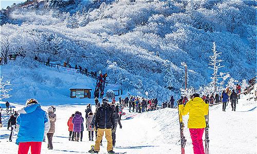 Lễ hội câu cá trên sông băng ở Hàn Quốc