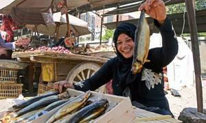 Cá đối lên men - đặc sản chết người của Ai Cập