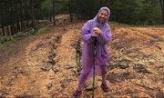 Chuyến trekking Tà Năng không như mơ của cô gái Sài Gòn