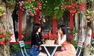Quán cà phê kiểu Pháp ở Sài Gòn thay hoa mỗi tháng để khách chụp ảnh
