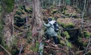 Cô gái Việt một mình khám phá khu rừng tự sát ở Nhật Bản