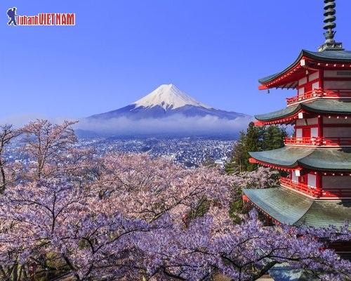 Vẻ đẹp Nhật Bản mùa hoa anh đào.