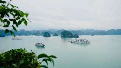 Theo Sở Du lịch tỉnh, ước tính cả năm 2018, Quảng Ninh đón 12,2 triệu lượt khách du lịch, tăng 24% so với năm 2017, trong đó khách quốc tế đến từ 150 quốc gia, vùng lãnh thổ là 5,22 triệu lượt người. Tổng thu từ khách du lịch đạt 23.600 tỷ đồng, tăng 32%. Ảnh:Phạm Huyền.