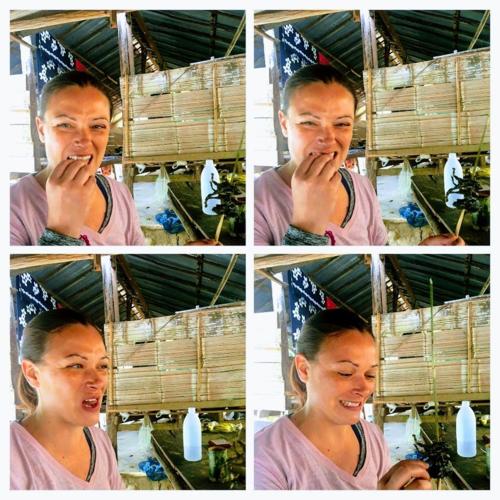 Julie ăn ếch chiên tại Thái Lan. Ảnh:Insatiable Travel.