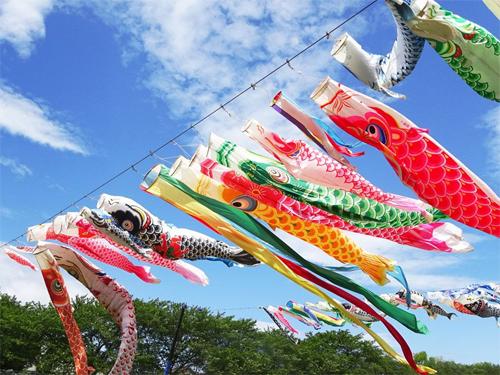 Cờ cá chép cầu chúc sức khỏe và hạnh phúc cho trẻ em Nhật Bản. Ảnh: Cotoacedemy.