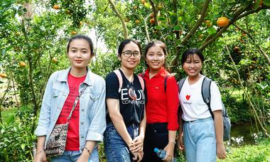 Vườn quýt Lai Vung tấp nập đón khách dịp cận Tết