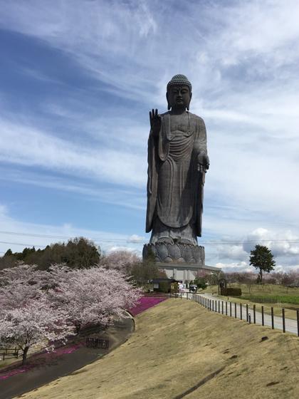 Tượng Phật Ushiku Daibutsu: cao 120m, tự hào là tượng đồng đúc cao nhất thế giới.