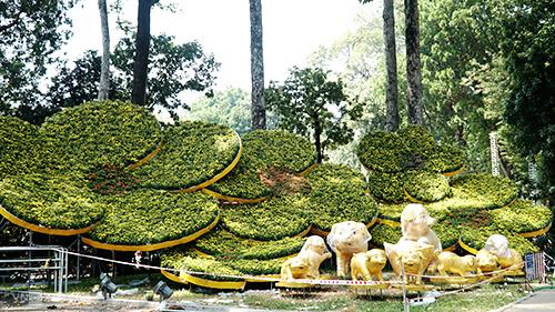 Hội hoa xuân công viên Tao Đàn, quận 1Ảnh: Di Vỹ.