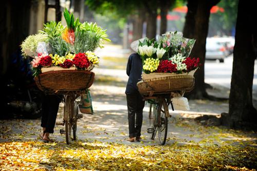 Thủ đô Hà Nội lãng mạn như thơ với những chiếc xe hoa. Ảnh: Vũ Minh Quân.