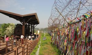5 điểm đến khi tham quan khu phi quân sự ở Hàn Quốc