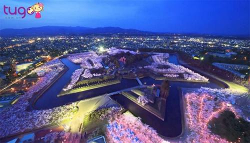 Tugo có những tour du lịch hấp dẫn ở Nhật Bản, Hàn Quốc, Đài Loan. Ảnh: Tugo.